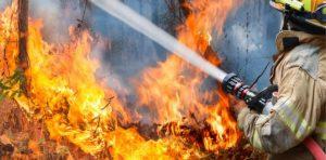 Forest Fire Insurance