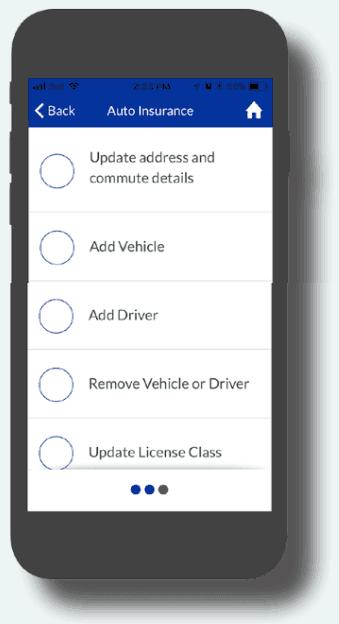 Leibel Insurance App Alberta Canada