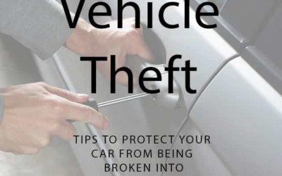 Vehicle Theft Precautions
