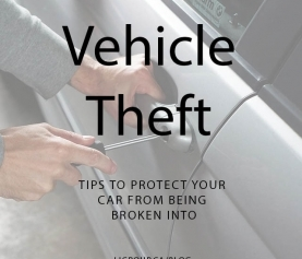 Vehicle Theft Precautions