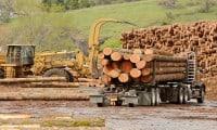 hero logging insurance